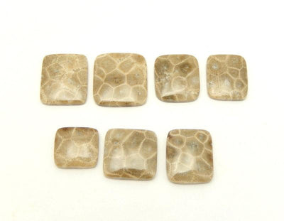 Agatized Agate Square Shaped Stone (RK14B7-13)