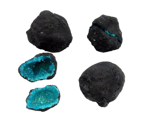 Geodes - Break Your Own Geode - Teal Color Dyed Druzy Geodes - Gorgeous Display Piece (OB6B7)