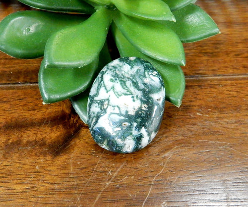 Metaphysical - Moss Agate Worry Stone Slab - Thumb Stone - Palm Stone - Chakra - Crystal Therapy - Metaphysical (RK179B7)
