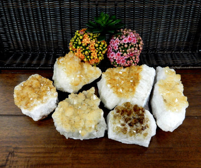 Minerals - Citrine Cluster - 2-3 LB Clusters - Chakra Crystals - Gift - Home Decor (HCB-02)
