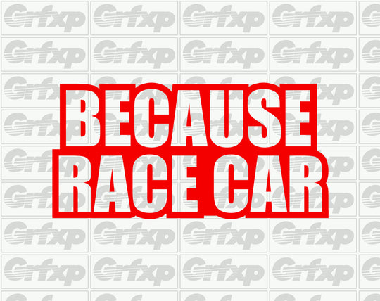 Because Racecar Sticker