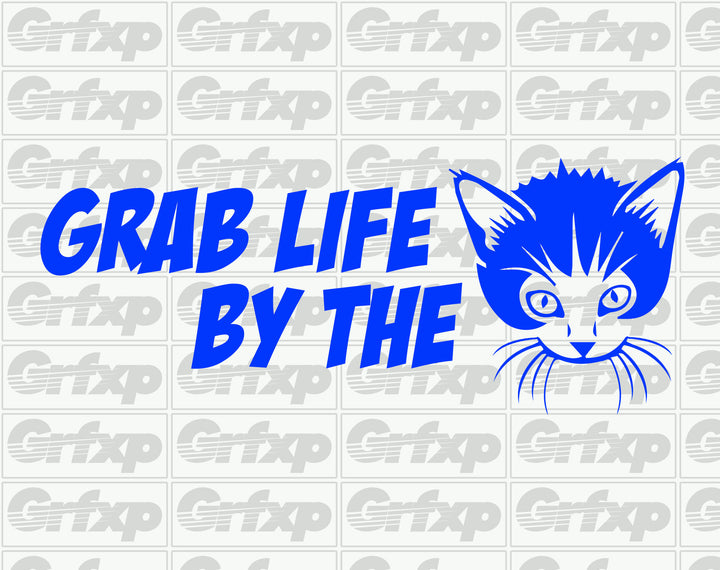 Grab Life By The P*ssy Sticker