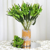 4 Heavenly Mount Olympus Freesia Bushes - Lime