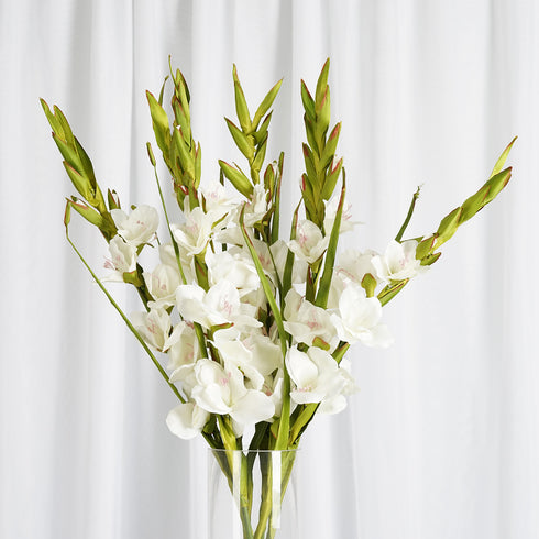 6 Stem 48 Pcs Ivory Artificial Gladiolus Stem Flowers