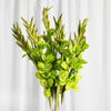 6 Stem 48 Pcs Lime Artificial Gladiolus Stem Flowers