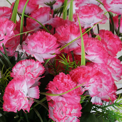 252 Carnation Flowers-Fushia