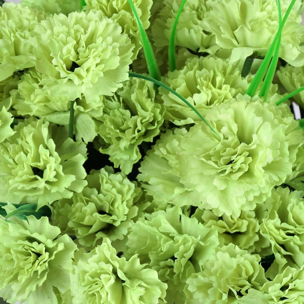 252 Carnation Flowers-Lime Green