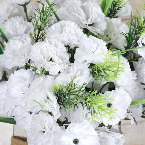 252 Carnation Flowers-White
