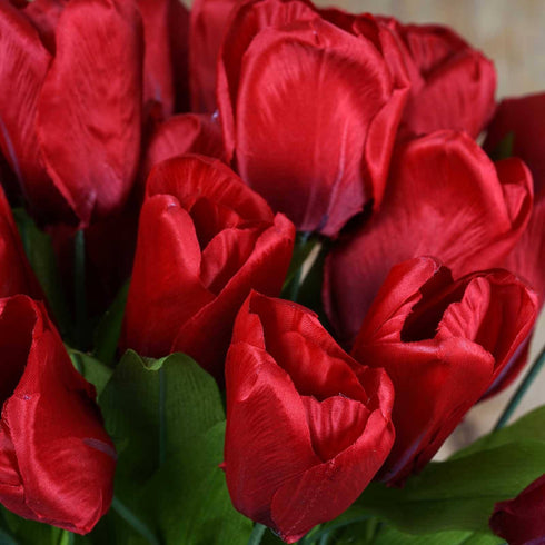56 Tulip Flowers - Red