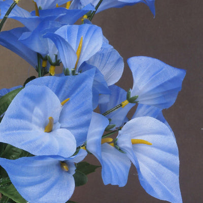 252 Mini Calla Lily - Blue