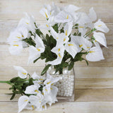 252 Mini Calla Lily - White