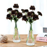 12 Bush 84 Pcs Chocolate Large Jubilee Carnation Flowers