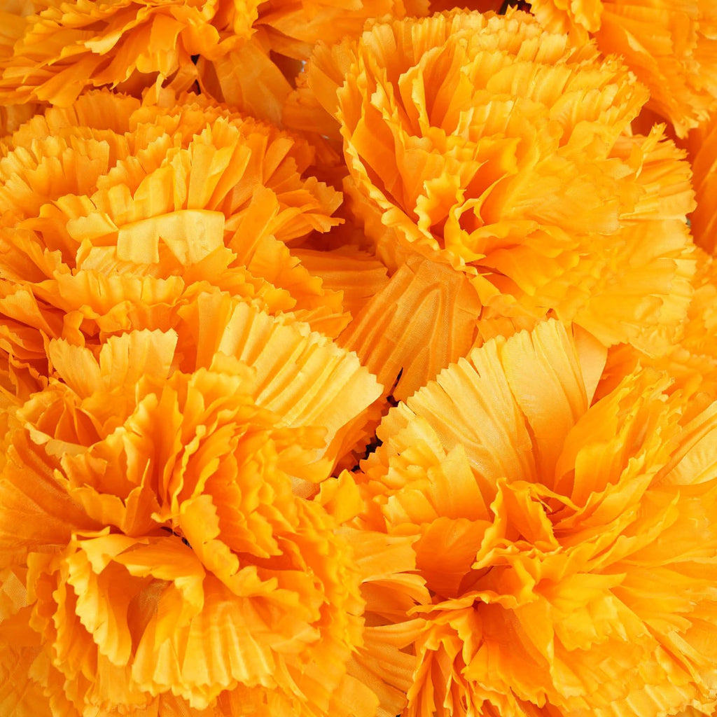 36 GIANT Your-Special-Day Carnations - Orange