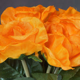 6 x The Perfect Hollywood Bouquet Orange Roses