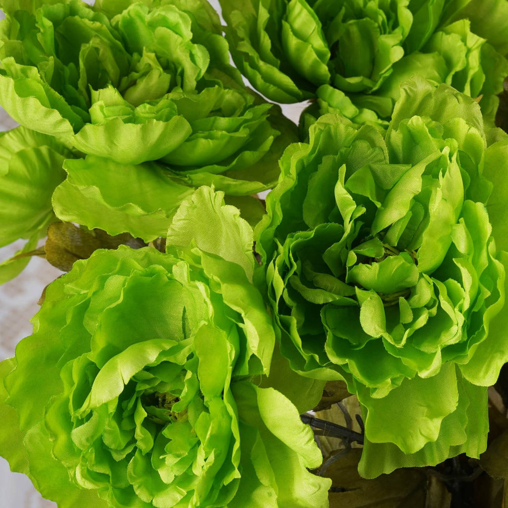 42 QUEEN Peony Flowers - Lime