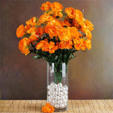 72 Buttercup Ranunculus Bulb Flowers Orange