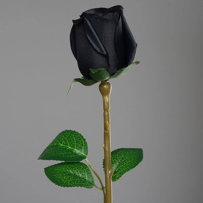 24 Long Stem Roses - Black
