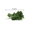 12 Bush 144 pcs Greenery Artificial Leather Fern Branches