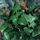 4 Bunches Fig Leaves - Green