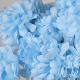 56 Chrysanthemum Mum Balls - Light Blue