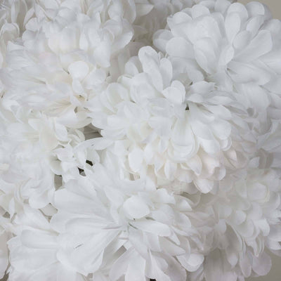 56 Chrysanthemum Mum Balls - White( Sold Out until 2017-03-03)