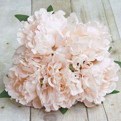 "1 Bush | 5pcs 11"" Tall Blush 