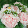 12'' Tall Blush | Rose Gold Artificial Peony Silk Peonies Bouquet