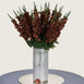3 Bush 24'' Chocolate Artificial Delphinium Flowers