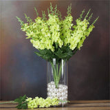3 x Delphinium Bush - Lime