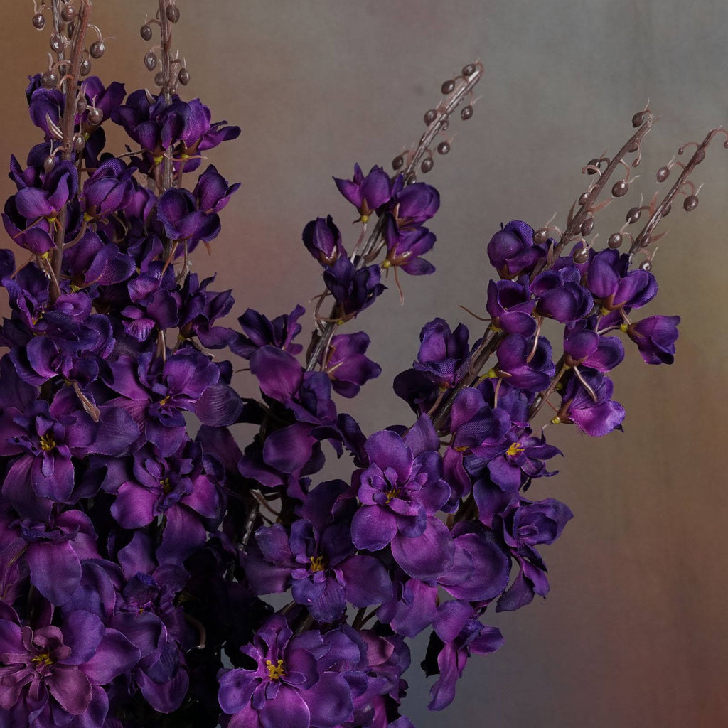 3 x Delphinium Bush - Purple