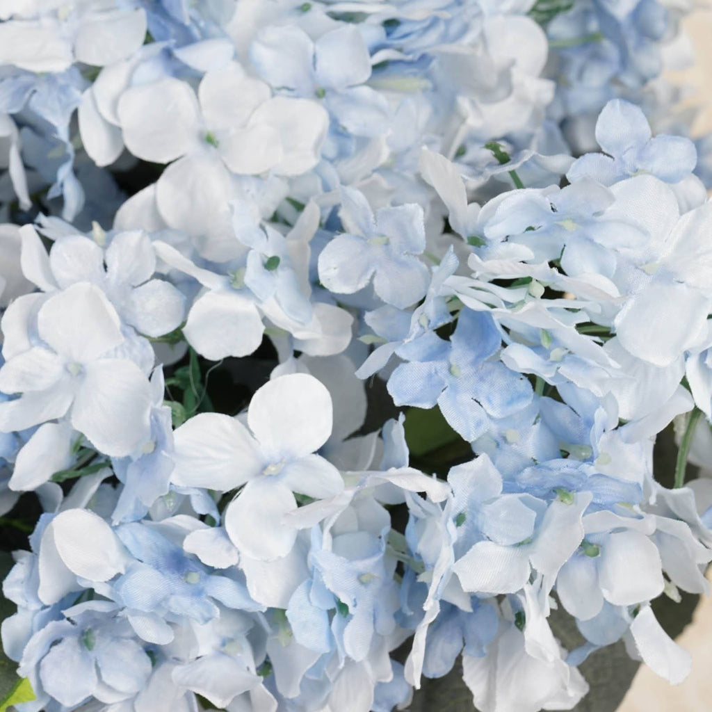 4 x Light Blue Hydrangea Bush