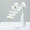 20pcs | 4inch White Butterfly Orchid Artificial Flower Heads, DIY Craft Silk Flowers