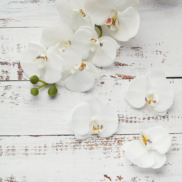 "20pcs | 4"" White Butterfly Orchid Artificial Flower Heads, DIY Craft Silk Flowers"