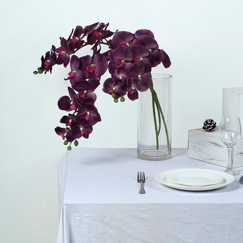 Orchids and Eggplant