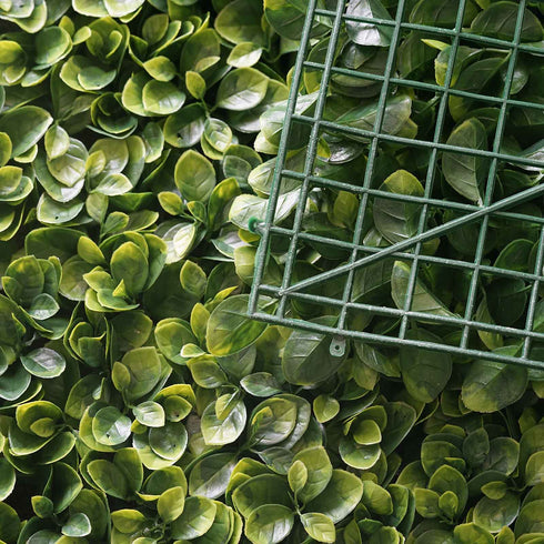 Artificial Large Faux Boxwood Green Wall Panel - 4pcs