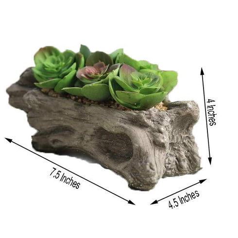 Fake Succulent Planter | 5 Artificial Succulents in Pot | Mini Decorative Plants | eFavorMart