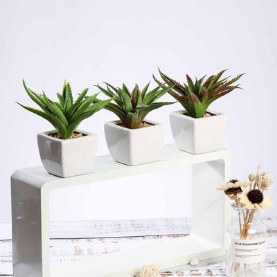 "Set of 3 | Assorted Fake Succulents in Pot | 5"" Assorted Spotted Aloe Vera Artificial Plants with Pots"