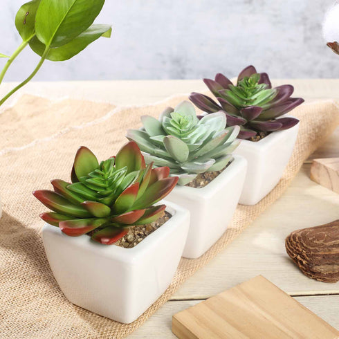 Set of 3 | 4'' Assorted Echeveria Artificial Faux Succulent in Pots