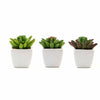 Set of 3 | Assorted Fake Succulents in Pot | 4'' Assorted Lotus Artificial Plants with Pots