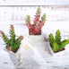 Set of 3 | Assorted Fake Succulents in Pot | 8'' Assorted Sedum Oaxacanum Artificial Plants with Pots