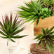 "Set of 3 | 8"" Assorted Artificial Succulent Plant Wholesale Aloe Cactus Air Plants"