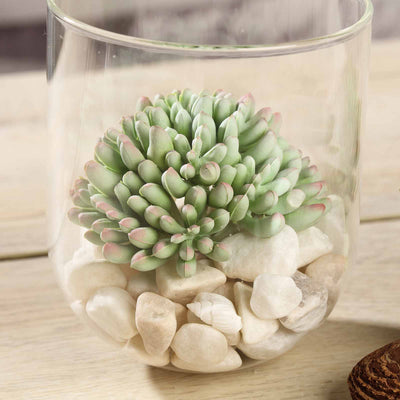 "Set of 3 | 4"" Assorted Artificial Succulent Plants Mini Jelly Bean Air Plants"