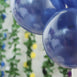 "25 Pack 12"" Navy Blue Chrome Water Air Helium Party Latex Balloons Wholesale"