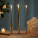 "12 Pack - 10"" Gold Premium Taper Candles"