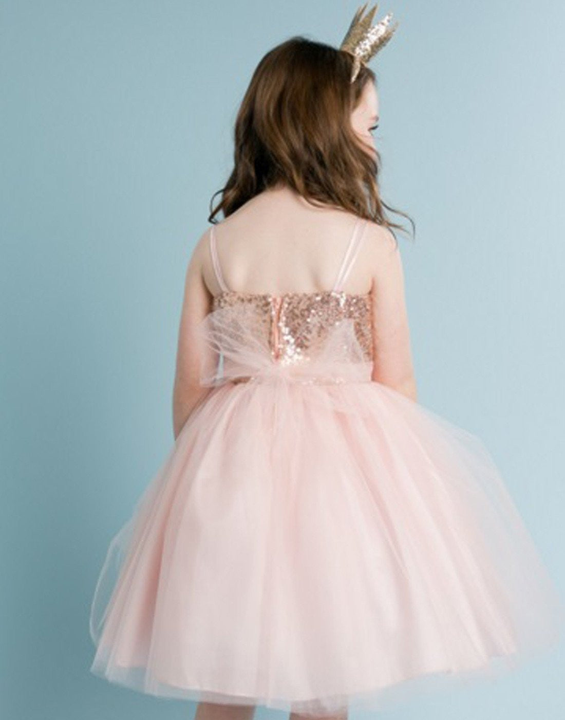 Twinkling Sequined Bodice and Tulle Overlay Skirt Dress - Blush ...