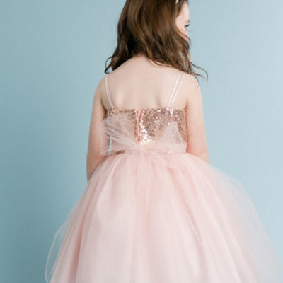3fd8e0c03 Twinkling Sequined Bodice and Tulle Overlay Skirt Dress - Blush ...