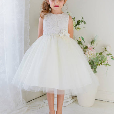 Glamorous and Lace tulle Dress with Flower Accented Belt - Ivory