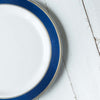"10 Ct | 10"" Round Royal Blue with Silver Rim Disposable Dinner Plates - White"