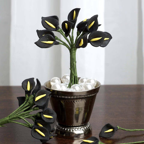 144 EXTRA TOUCH Peacock-Spread Craft Lilies- Black