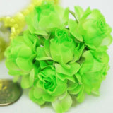 12 Bundle Apple Green Semi Bloomed Craft Roses